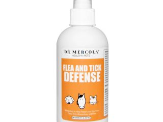 natural flea and tick protection