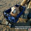 collapsible pet wagon