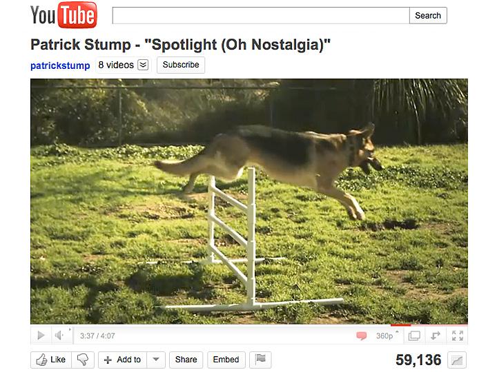 Three Legged German Shepherd Codie Rae in Patrick Stump Spotlight (Oh Nostalgia) Music Video